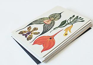 """Papier - Pohľadnica """" Botanicum """" Orchids - 13589990_"""