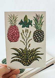 "Papier - Pohľadnica "" Botanicum ""Bromeliads - 13590007_"