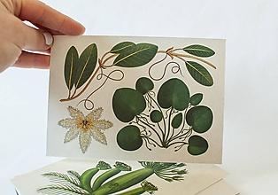 """Papier - Pohľadnica """" Botanicum """" Aquatic plants - 13590054_"""