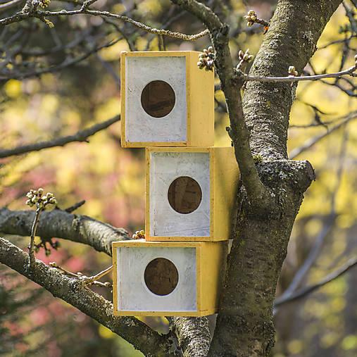 Búdka na hniezdenie pre vtáčiky