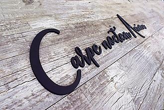 Dekorácie - Carpe noctem anima 70cm*20cm...nápisy na želanie - 13599752_