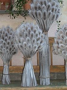 Dekorácie - Kytica z bodliačikov - 13608538_
