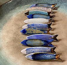 Brošne - Teplomilné rybičky. - 13633416_