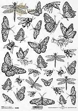 Papier - Ryžový papier - 13680243_