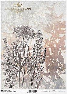 Papier - Ryžový papier - 13680215_