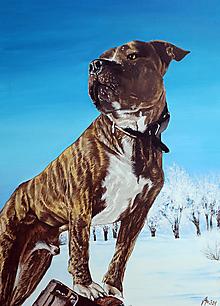 Obrazy - Portrét psíka podľa želaní - na objednávku - 13702961_