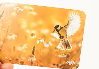 """Papier - Pohľadnica """"sýkorka"""" - 13707046_"""
