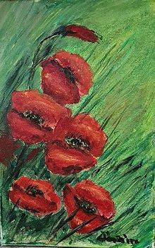 Obrazy - Červené maky - 13714634_