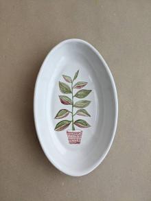 Nádoby - oválna miska rastlina (Ficus elastica) - 13718705_