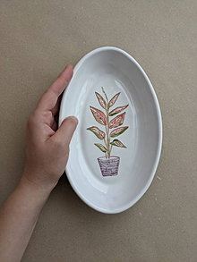 Nádoby - oválna miska rastlina (Aglaonema) - 13718713_