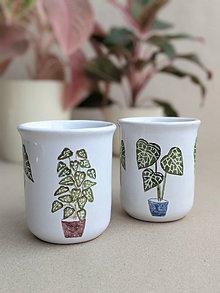 Nádoby - keramická šálka stredná (Alocasia a Anthurium) - 13718799_