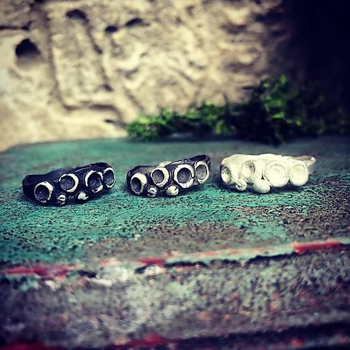 Strieborný prsteň - Morský život