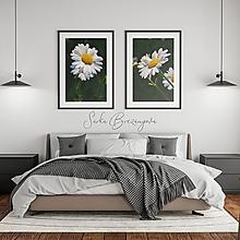 Grafika - MARGARÉTY - 13737409_