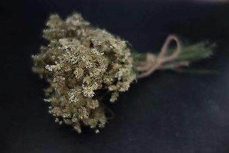 Suroviny - lúčne kvety- kytička pre aranžérov - 13740830_