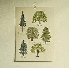 Grafika - Print A3 - Stro:my - 13752037_