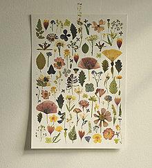 Grafika - Obrázok A3 Kvety - 13753338_