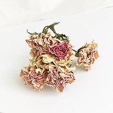 Suroviny - svetloružové mini ružičky - 13764361_
