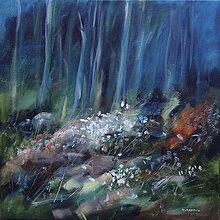 Obrazy - Snežienky v nočnom lese - 13767704_