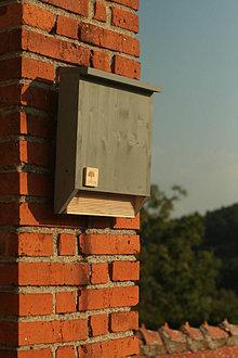 Pre zvieratá - Búdka pre netopiere SOMSTROM - 13768648_