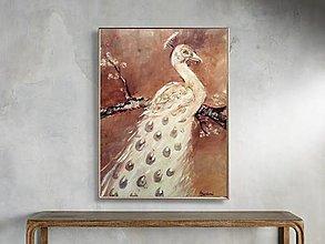 Obrazy - Páv biely - 13796255_
