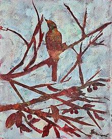 Obrazy - Silueta vtáka na konári - 13798274_