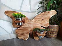 Dekorácie - Motýľ s kvetináčiky - 13805346_