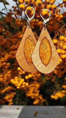 Náušnice - Drevené náušnice so živicou vyrobené z bukového dreva a háčiky sú zo striebra. .Rôzne farebné prevedenia aj na želanie. - 13823424_