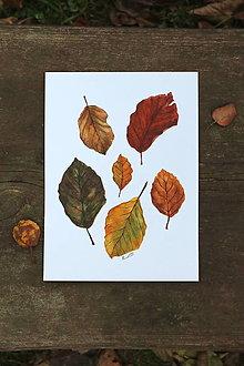 Obrazy - Jesenné listy - originál akvarel - 13835481_