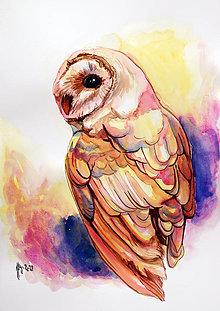 Obrazy - Owl dream - tlač A4, A3 - 13849102_