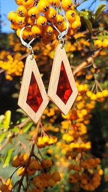 Náušnice - Drevené náušnice so živicou  vyrobené z bukového dreva a háčiky sú z nehrdzavejúcej ocele .Rôzne farebné prevedenia - 13851400_