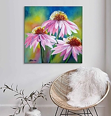 Obrazy - Echinacea 50x50 - 13850236_