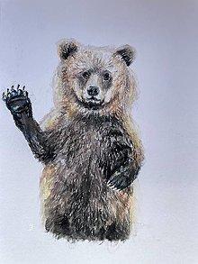 Papiernictvo - Medveďku, daj labku - 13867619_