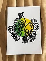 Grafika - Monstera deliciosa (zeleno-žltá) - 13870823_