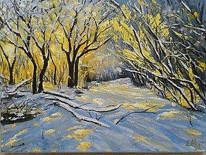 Obrazy - Zimna krajina - 13871754_